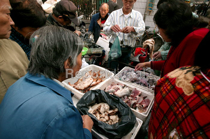 People buy meat and fish, Old Town Ghost Market, Shanghai, China. - Jess Hurd - 2003-10-26