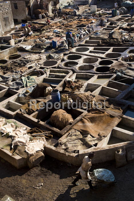 Poor working conditions in the Marrakech tanneries, where leather is washed and dyed, Morocco. - Jess Hurd - 2008-01-12