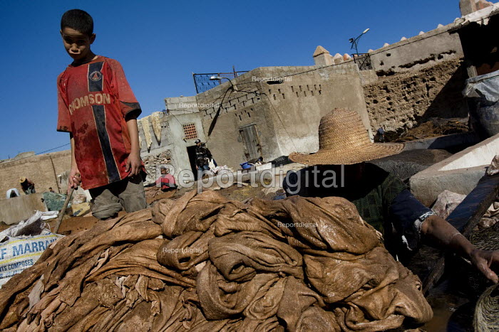 Child labour and poor working conditions in the Marrakech tanneries, where leather is washed and dyed, Morocco. - Jess Hurd - 2008-01-12