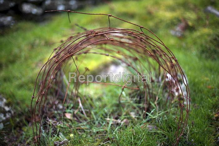 Wire, Bird Rock, Craig yr Aderyn. Tywyn, Dysynni Valley. Snowdonia National Park. Wales. - Jess Hurd - 2014-10-25