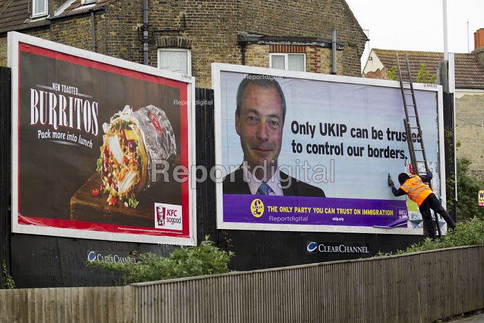 Black worker pasting a UKIP election immigration poster... - Jess Hurd, jj1505032.jpg