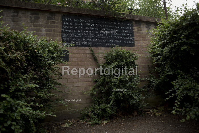 Message graffitied on a wall by a local Poplar resident about the loss of a vandalised yellow rose bush. Tower Hamlets, East London. - Jess Hurd - 2015-06-12