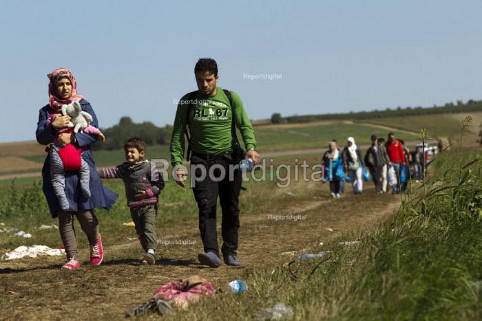 Family with a sick child. Refugees run through corn fields towards the Tovarnik, Croatia border crossing. Serbia. - Jess Hurd - 2015-09-21
