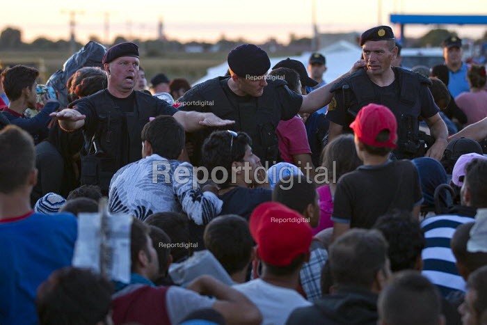 Police try to get control as thousands of refugees wait at the Tovarnik, Croatia border crossing. Serbia. - Jess Hurd - 2015-09-21