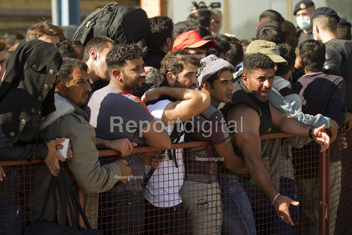 Exhausted refugees plead for food and water as they wait to access the overcrowded Opatovac refugee camp. Croatia. - Jess Hurd - 2015-09-22