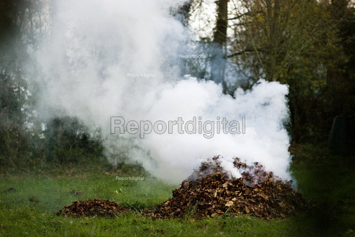 Smoking bonfire made from a pile of leaves, The New Forest, Hampshire - Paul Carter - 2007-11-25