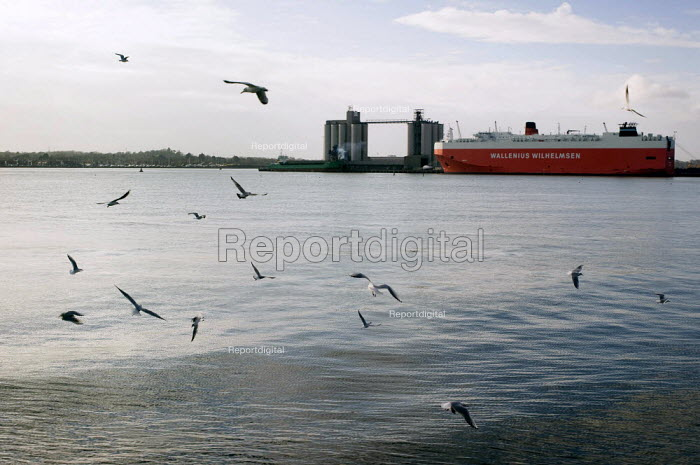 Cargo ship in Southampton docks. - Paul Carter - 2008-01-06