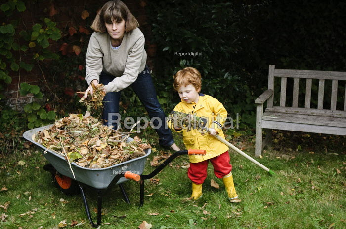 Mother and young son gardening. They are collecting fallen leaves with a rake and putting them in a wheelbarrow. - Paul Carter - 2008-10-04