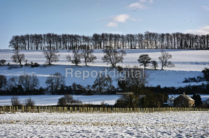 Snow in the fields on the chalk downs near Salisbury after a week of the heavy snowfall - Paul Carter - 2009-02-07