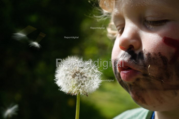 Young boy with his face painted like a pirate blowing a dandelion seed clock. - Paul Carter - 2010-06-16