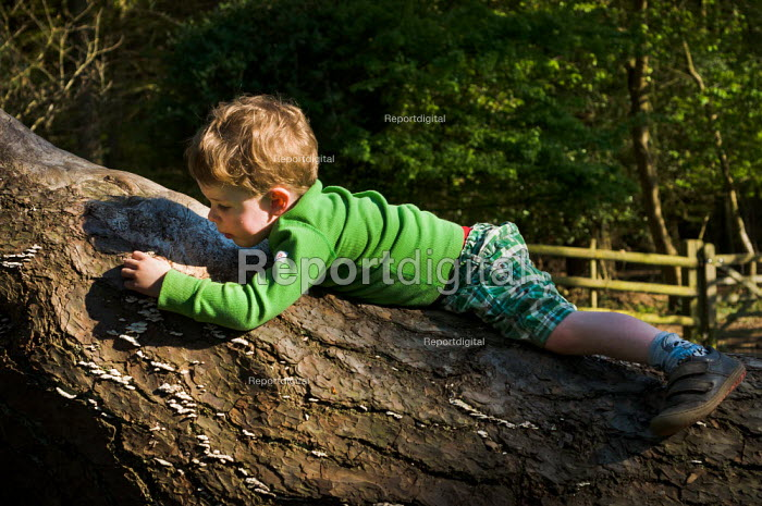 Young boy laying on a fallen tree at Norley Wood, The New Forest. - Paul Carter - 2011-04-20