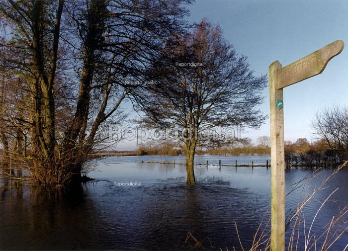 River Avon flooding a nearby field. - Paul Carter - 1995-02-06