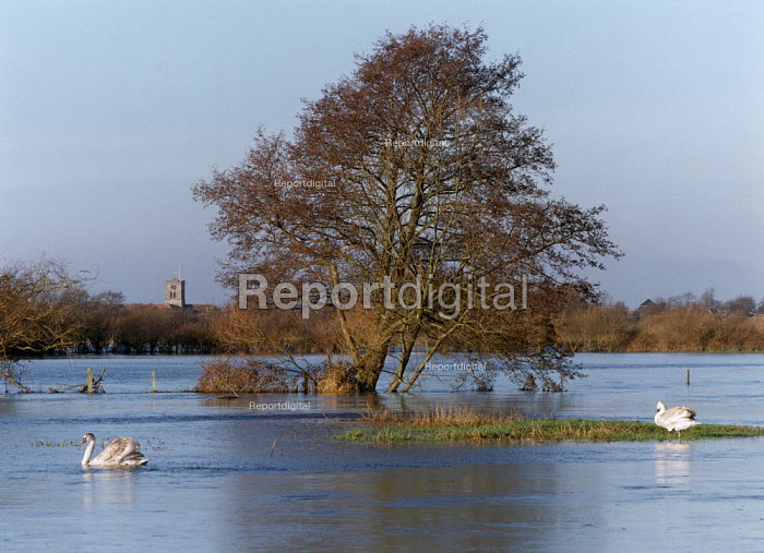River Avon flooding a nearby field. - Paul Carter - 1995-01-29