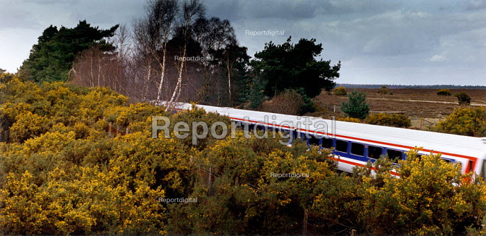 Express train travelling through the centre of The New Forest. - Paul Carter - 1994-03-18