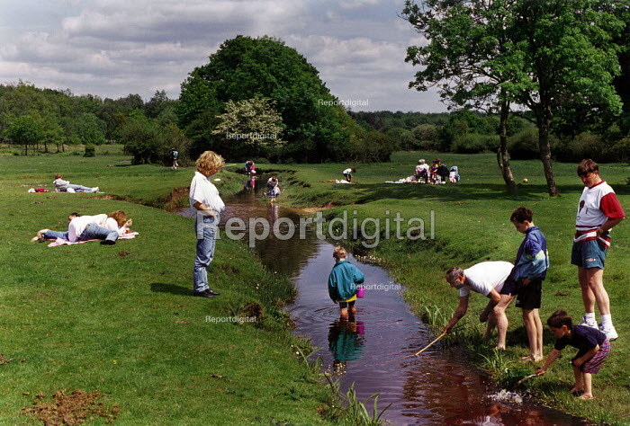 Families paddling and fishing in a stream in the New Forest. - Paul Carter - 1994-05-31