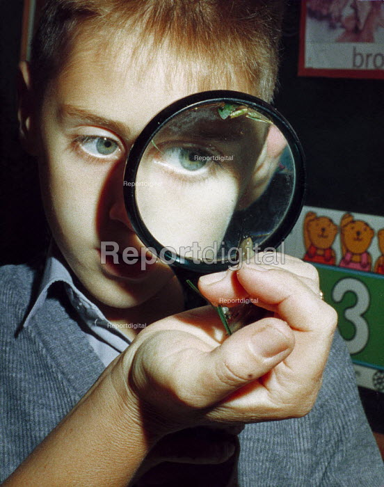 Young boy looking through a magnifying glass at a slug on a teacher's hand. - Paul Carter - 1987-10-05