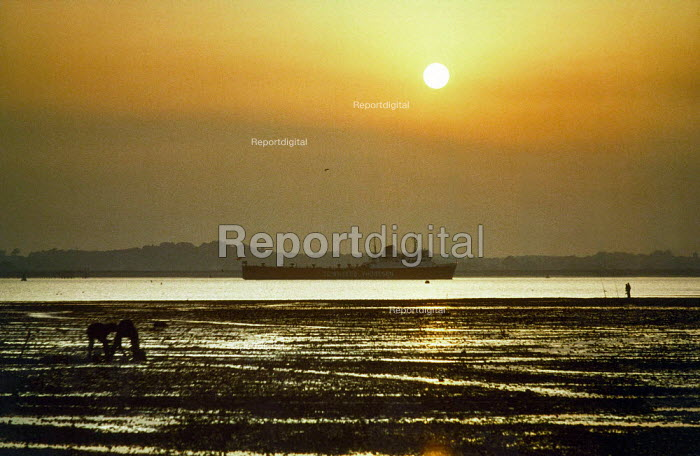 Ship sailing into Southampton docks at low tide. Taken at sunset. - Paul Carter - 2002-03-05