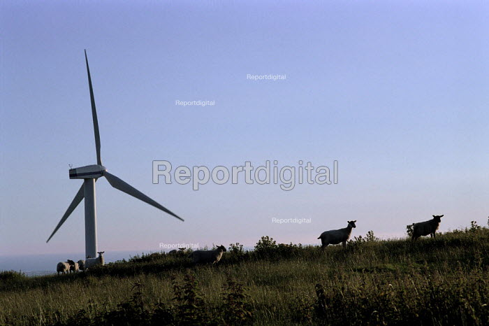 Silhouetted windmill surrounded by sheep, Winscales Moor Wind Farm, Cumbria - Paul Carter - 2000-07-17