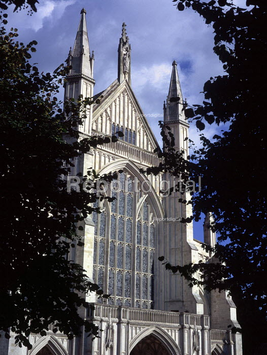 Exterior views of Winchester Cathedral, looking through Yew trees. - Paul Carter - 1999-08-18