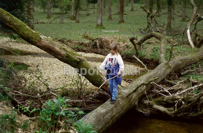 Young girl water divining whilst walking along a tree that has fallen across a river. The New Forest, Hampshire. - Paul Carter - 1989-04-15