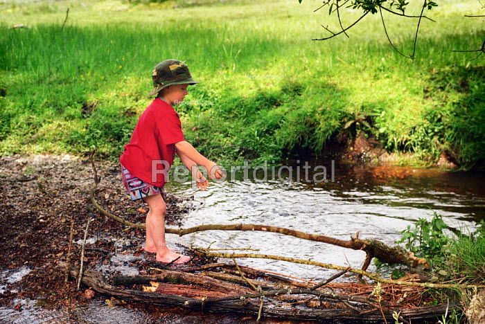 A young boy playing by a stream, the New Forest, Hampshire. - Paul Carter - 2002-06-01