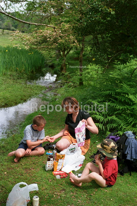 Family picnic by a stream, the New Forest, Hampshire. - Paul Carter - 2002-06-01