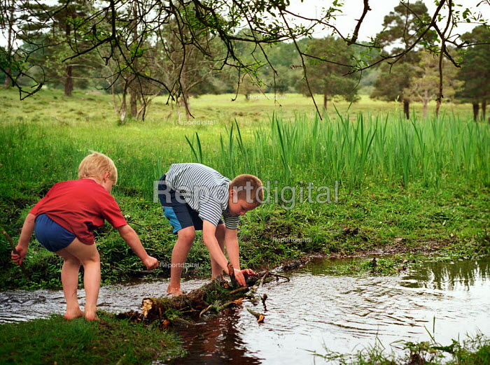 Two young boys building a dam across a stream, The New Forest, Hampshire. - Paul Carter - 2002-06-01