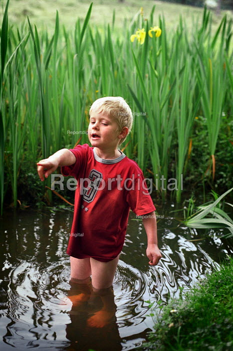 A young boy playing in a stream, The New Forest, Hampshire. - Paul Carter - 2002-06-01