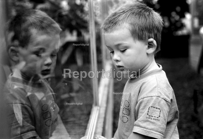Young boy looking into a glass enclosure in a zoo. - Paul Carter - 2001-09-13