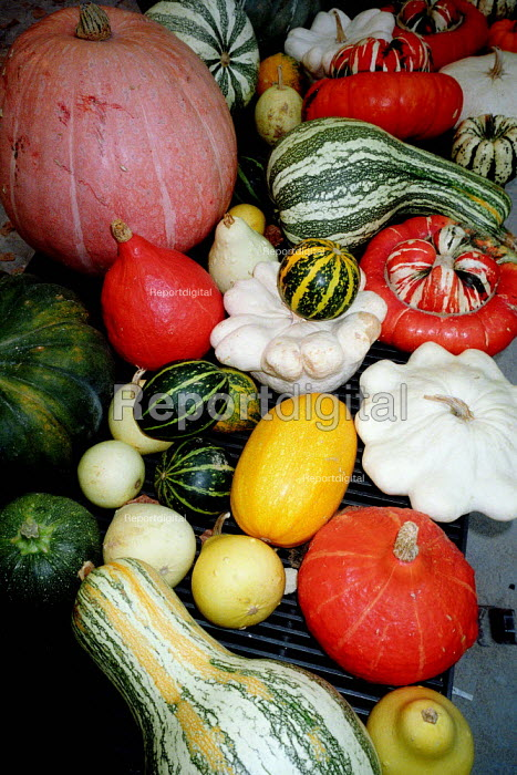 Market stall display of colourful fruit and vegetables. - Paul Carter - 2001-09-23