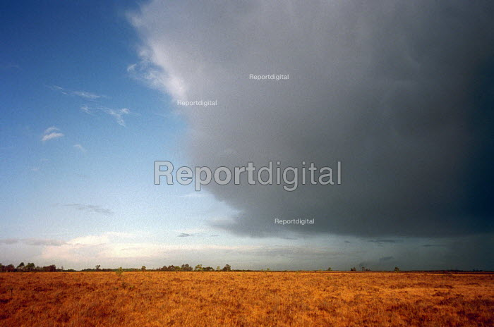 Storm clouds over the heaths of the New Forest, Hampshire. - Paul Carter - 2002-11-03