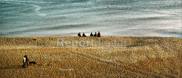 A group of friends sitting on a shingle beach looking out to sea. A couple walk their dog along the shingle. Brighton - Paul Carter - 2001-05-12