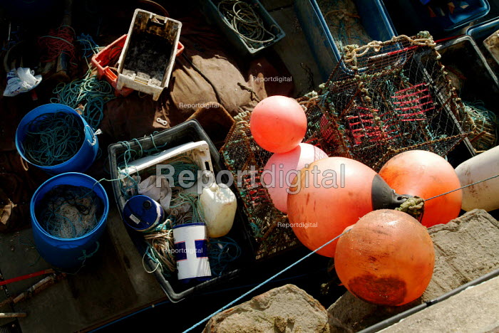 The cargo of a small fishing boat docked in of Brigton marina. - Paul Carter - 2003-07-10