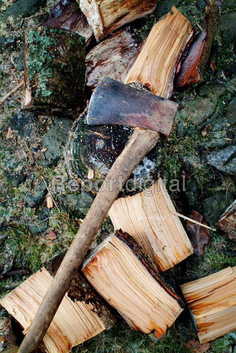 An axe lying on a chopping block, surrounded by logs cut for firewood. - Paul Carter - 2003-12-30
