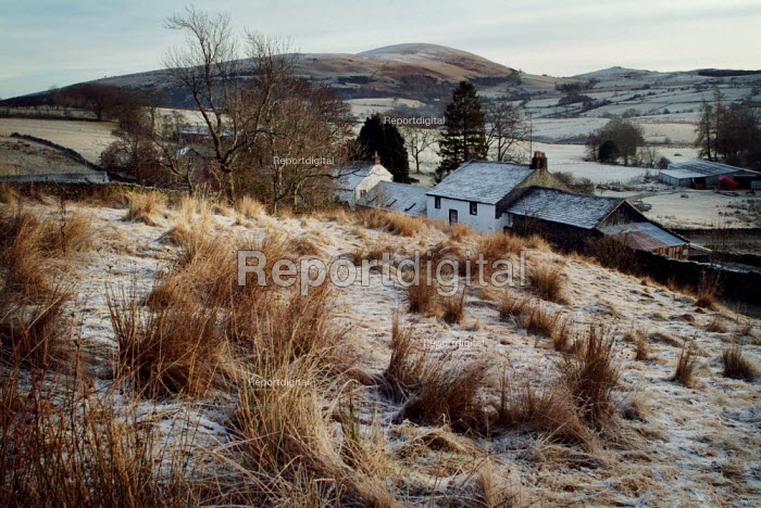 Small row of country cottages and a farm, The Lake District - Paul Carter - 2003-12-30