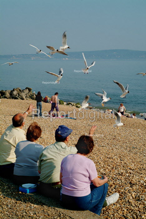 People sitting on the beach feeding seagulls, Milford-on-Sea, Hampshire - Paul Carter - 2003-05-29