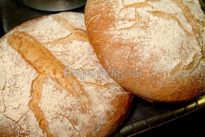 Two large floured bread rolls. - Paul Carter - 2004-07-27