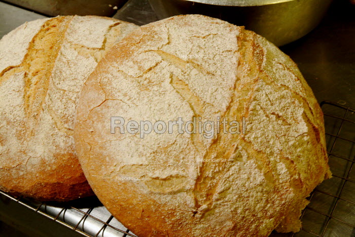 Two large floured bread rolls. - Paul Carter - 2004-07-27