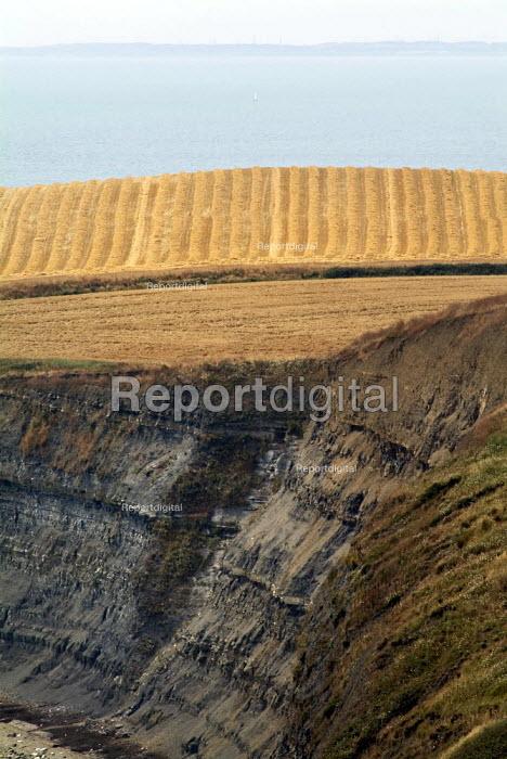 Golden field, crops recently harvested on farmland near to the coast towards Kimmeridge, Dorset. - Paul Carter - 2004-08-03