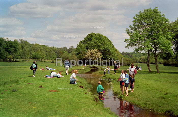 Families sitting by a stream that flows through a field, while children paddle in the water and play on the banks. New Forest. - Paul Carter - 1994-05-31