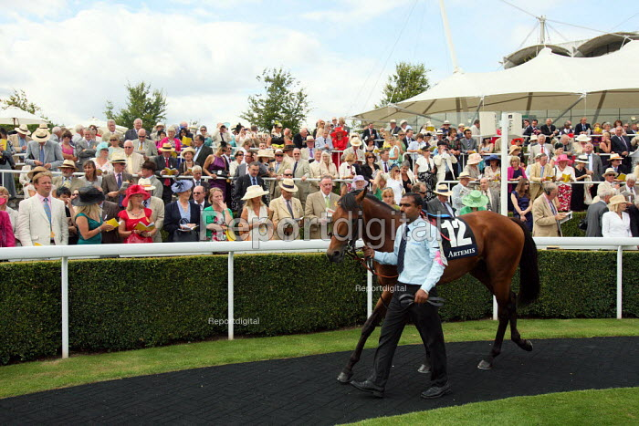 Horses are paraded around by handlers the winners enclosure at Goodwood racecourse. - Justin Tallis - 2010-07-29