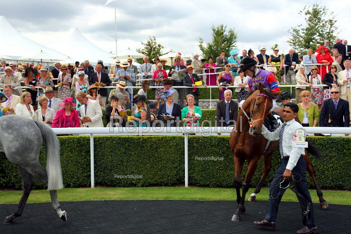 Horses are paraded around the winners enclosure at Goodwood racecourse. - Justin Tallis - 2010-07-29