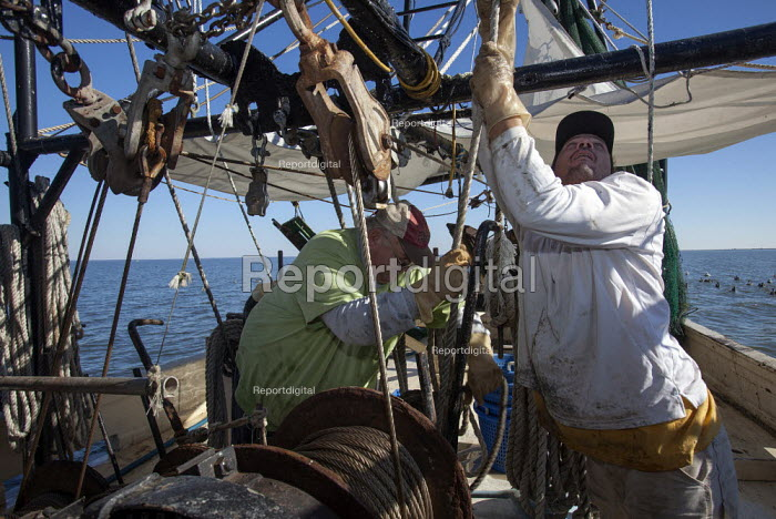 Mobile, Alabama - A shrimp trawler on Mobile Bay. Darrell Goleman (right) and Jackie Schwartz bring in the trawl net. The trawler is part of the Alabama Fisheries Cooperative. - Jim West - 2012-11-08