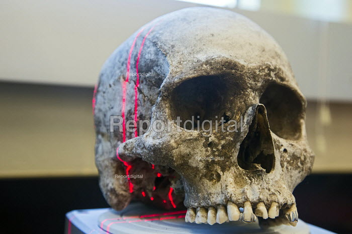 Waco, Texas, A scanner makes a 3D image of the skull of an unidentified migrant who died trying to enter the USA without legal documents. Forensic scientist Dr. Lori Baker and her students at Baylor University are trying to identify the remains of unidentified migrants who died trying to enter the USA without legal documents. Most perished in a long, hot walk as they tried to evade a Border Patrol checkpoint 70 miles north of the border. Dr Baker is director of Reuniting Families, an effort to identify and repatriate to families the remains of undocumented immigrants that die crossing the southern US border - Jim West - 2013-07-19