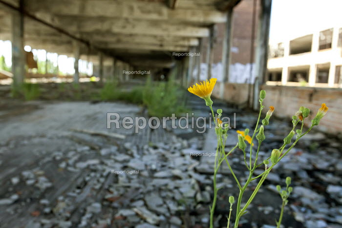 Detroit, Michigan - The abandoned Packard plant. Opened in 1903, the 3.5 million square foot plant employed 40,000 workers before closing in 1958. It has been left to decay. - Jim West - 2011-07-13