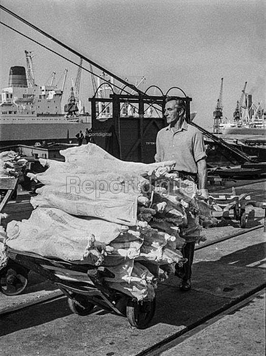 Traditional Dock work as it used to be, East India dock, London, before containerisation - manhandling frozen meat piecemeal - just before containerisation changed dock work for ever - Martin Mayer - 1970-07-06