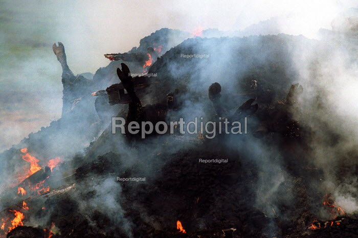 Cattle being burned on a pyre at a farm near Wreay, Cumbria. Foot and mouth epidemic. - Mark Pinder - 2001-04-01
