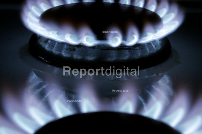 A gas flame on the burners of a domestic gas cooker. - Mark Pinder - 2006-03-14