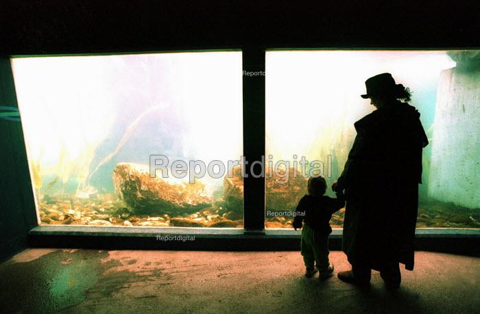 Bristol Zoo aquarium. Mother and Child look on - Paul Box - 1999-05-02