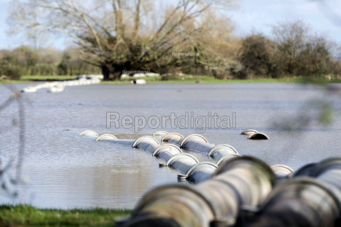 Environment agency pump water from flooded land at Moorland, on the Somerset levels. - Paul Box - 2014-02-07